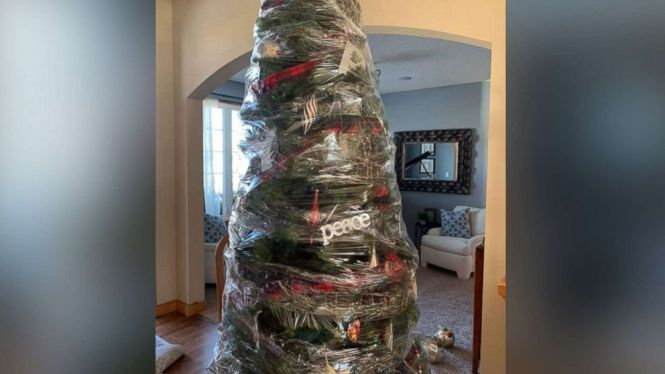 wrapped-christmas-tree-01-ht-jc-190108_hpMain_16x9_992.jpg